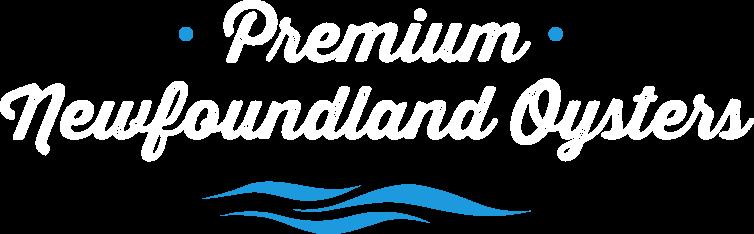 Premium Newfoundland Oysters